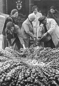 Zwiebelmarkt 1936